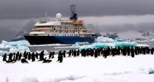 Most Spectacular Antarctica Destinations You Cannot Miss