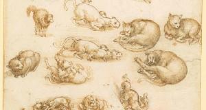 Leonardo da Vinci Drawings to Go on UK Tour