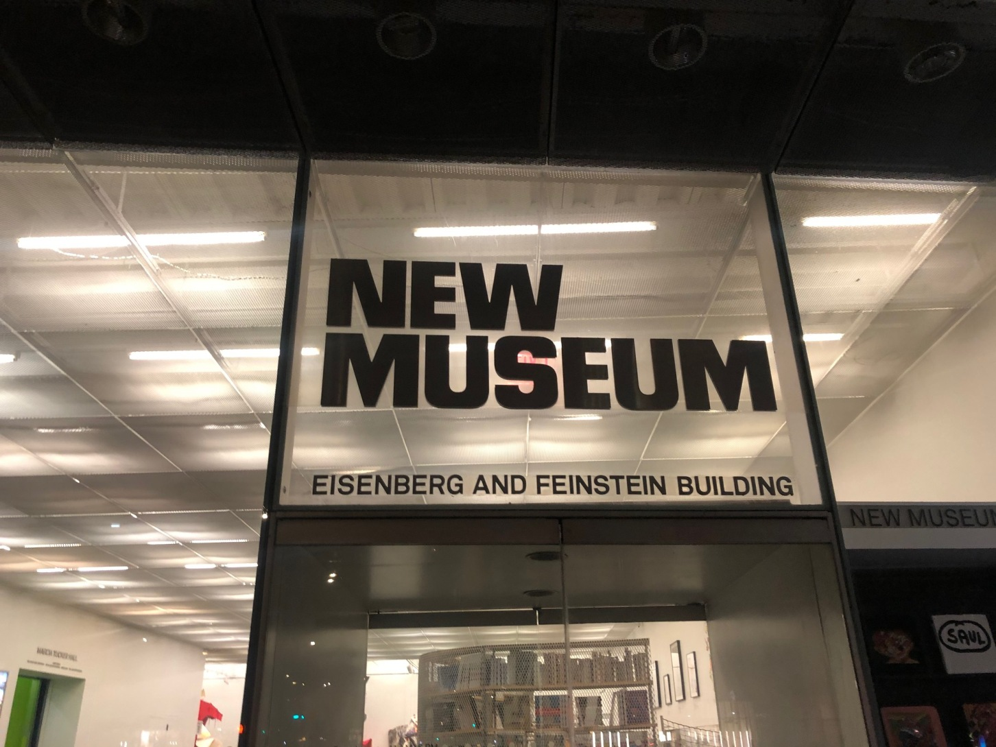 New Art and New Ideas at the New Museum in New York