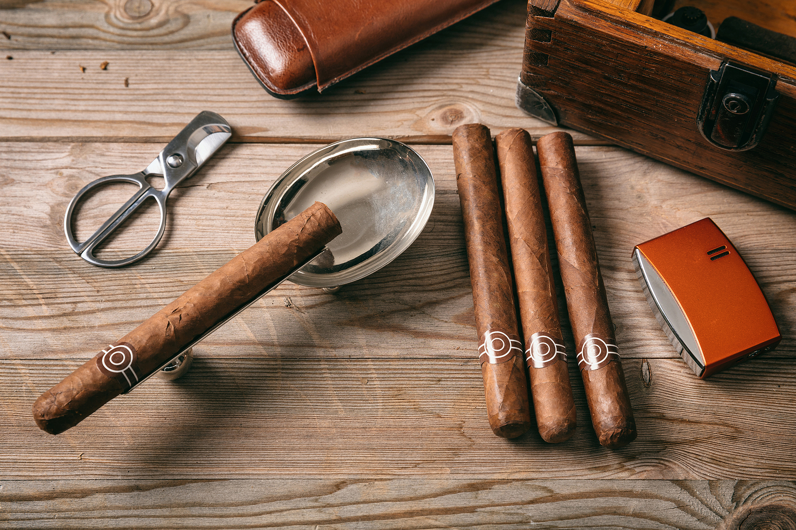 5 Curious and Interesting Facts about Luxury Cigars ...