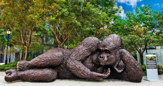 King Nyani: The Largest Bronze Gorilla Makes Its Way to NYC