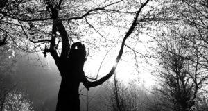 Ali Shokri — A Nature Photographer Whose Art Motivates
