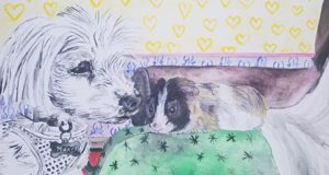 Pets of the Pandemic — A Benefit Exhibition at Alpha 137 Gallery