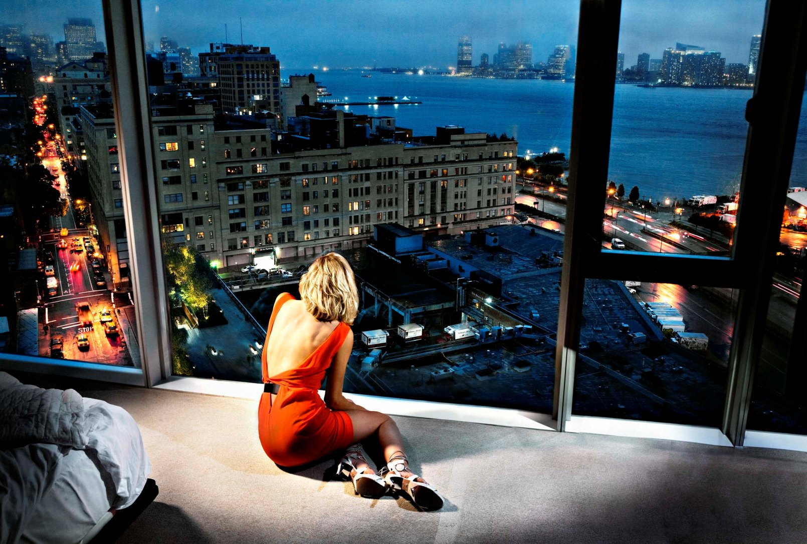 Collectors Edition — A Tribute to David Drebin's Most Iconic Works