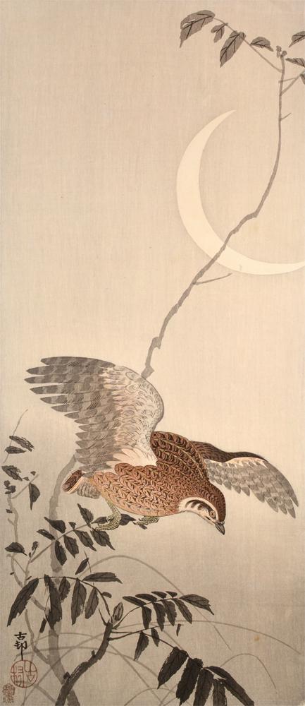 Kacho-e Art by Koson Ohara
