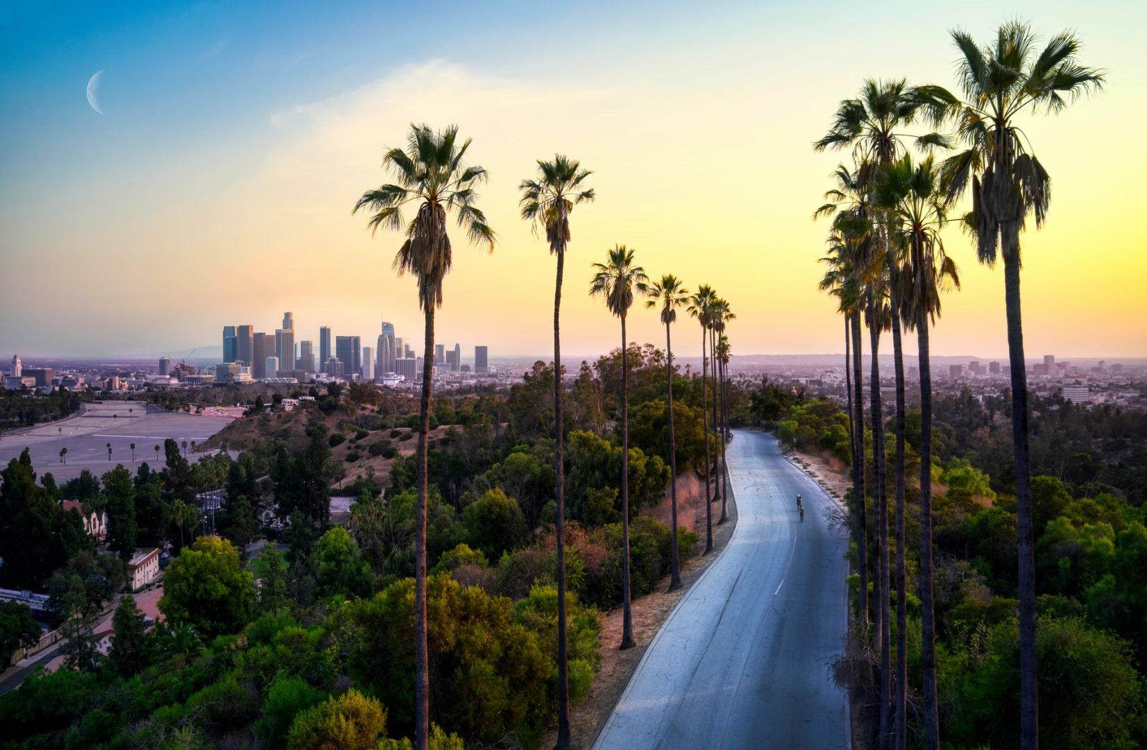 Art Shuttle NYC – Los Angeles